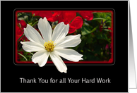 Business Thank You Greeting Card For All Your Hard Work card