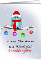 Granddaughter Christmas Card with Blue Bird, Red Hat, Scarf, Boots card