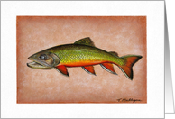 Fishing - Brook Trout card