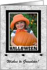 To Grandma, Spiders & Spider Webs, Halloween, Photo Card