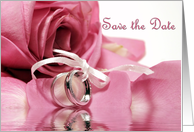 Save the Date Pink Rose card