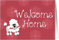 Welcome Home Poodle card