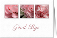Good Bye, Pink Flower on White Background card