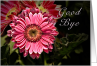 Good Bye - Pink Flower card