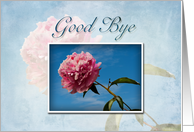 Good Bye Pink Flower and Blue Sky card