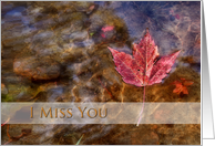 I Miss You, Maple Leaf in River card