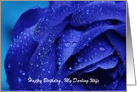 Happy Birthday to my Darling Wife with blue rose Floral Birthday card
