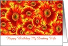 Happy Birthday to my Darling Wife with gerberas card