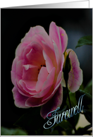 Farewell - Pink Rose card