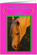 Brielle Birthday Horse - Happy Birthday card