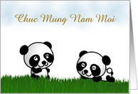 Chuc Mung Nam Moi Tet Vietnamese New Year Lunar New Year panda card
