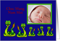 Chuc Mung Nam Moi Tet Vietnamese New Year Lunar custom photo snake card