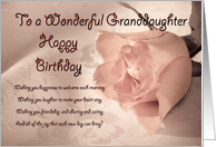 A birthday card for granddaughter. A pale pink rose on a delicate lace background card