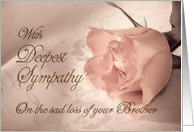 With deepest sympathy, loss of brother. A pale pink rose on a delicate lace background card