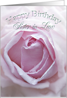 Birthday card for sister-in-law with a pink rose card