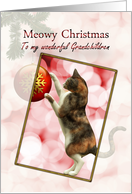 Grandchildren, Meowy Christmas with a playful cat. card