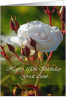 100th Birthday Card For Great Aunt card