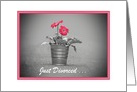 Just Divorced Announcement With Pink Daisies/Custom Card