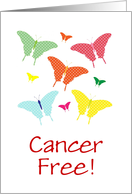 Cancer Free Announcement With A Beautiful Butterfly Design/Custom card