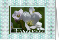 Farewell Teacher-Flowers-Digital Design Border, card