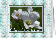 Birthday-For Co-Worker-Flowers-Digital Design Border, card