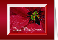 Christmas-In You New Home-Poinsettia-Custom Card