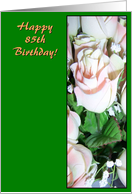 85th Birthday Card - Rose card