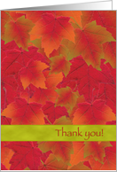Thanksgiving Thank You Autumn Leaves Colorful card