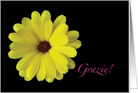 Italian Grazie Thank You Yellow Flower card