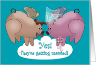 Couple's Shower Invitations Flying Pigs card