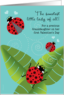 Granddaughter First Valentine's Day Cute Ladybugs card