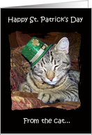 Happy St.Patrick's Day from the Cat card