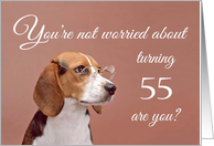 Happy 55th birthday, worried beagle card