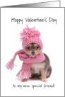 Happy Valentine's Day to my new special friend card