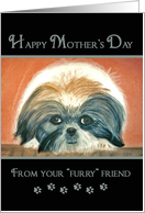 Mother's Day - from dog card