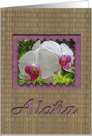 Aloha - thinking of you card