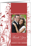 thank you for the wedding gift : silhouscreen birds photo card