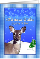 Christmas for Mom & Dad, Deer With Stars, Snowflakes, and Blue Gingham card