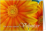 Thank You to Volunteer from Business, Yellow Orange Gazania Flowers card
