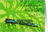 Congratulations on Weight Loss, Damselfly card