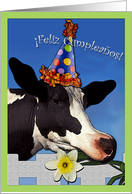 Spanish Birthday Funny Cow card