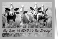 Birthday for Quads - Party Animals card