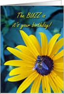 Buzzy Birthday for Friend, Bee on Flower card
