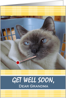 Get Well Soon for Grandma, Siamese Cat with Thermometer and Fever card
