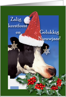 Dutch Christmas, Cow With Santa Hat card