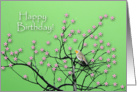 Birthday, Flowering Tree and Robin card