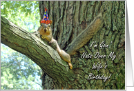 Birthday Card for Wife, Funny Squirrel With Hat card