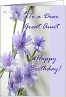 Birthday for Great Aunt, Chicory Flowers card