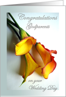 Congratulations to Godparents on Wedding, Mango Calla Lilies card