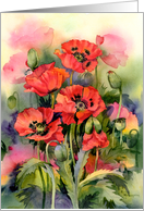 Oriental Poppies card